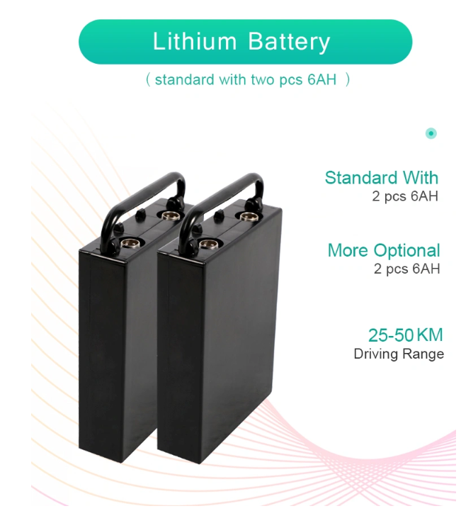 twin-batteries